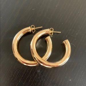Natalie B Adina Hoop Earrings
